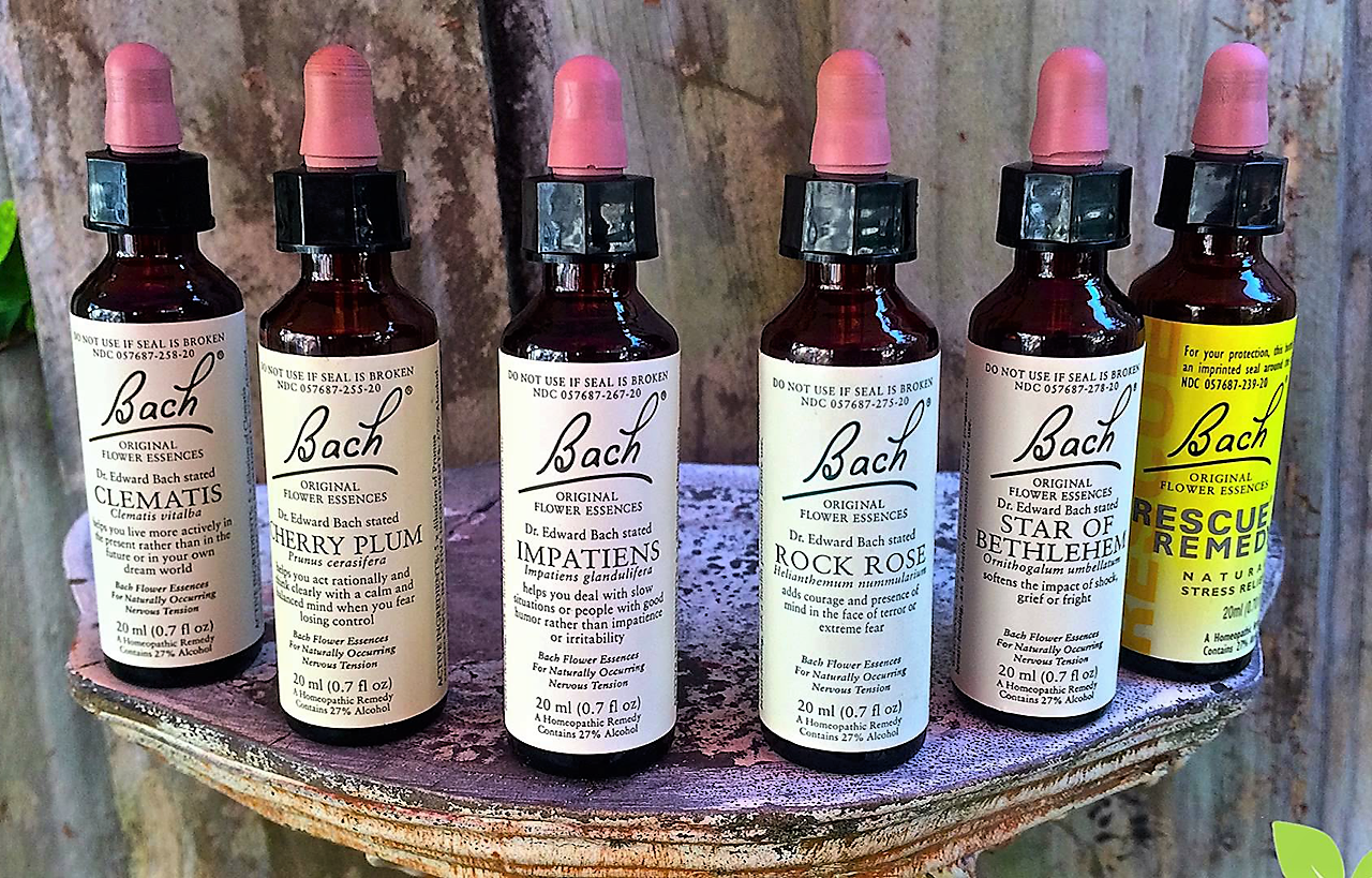 Bach Flower Essence Therapy